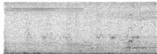 Lesser Whistling-Duck - Ganeshwar  SV