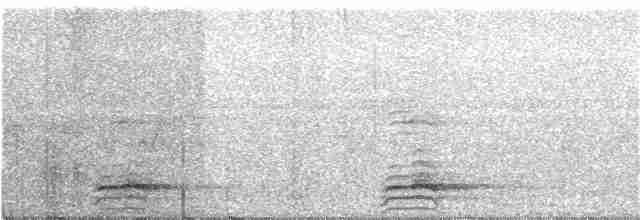 Highland Tinamou - Peter Kaestner