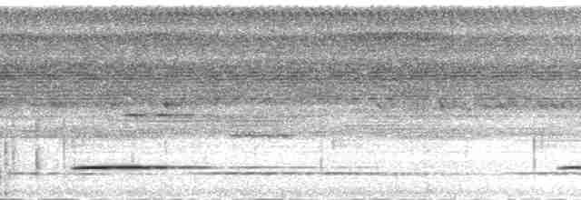 Cinereous Tinamou - Michael Harvey