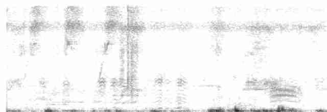Cotton Pygmy-Goose - Manoj Karingamadathil