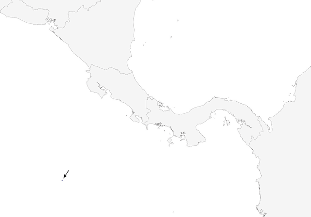 Distribution of the Cocos Cuckoo