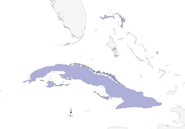 Distribution of the West Indian Woodpecker