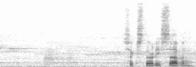 Scaly-breasted Partridge - Warren Y. Brockelman