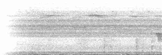 Long-tailed Myna