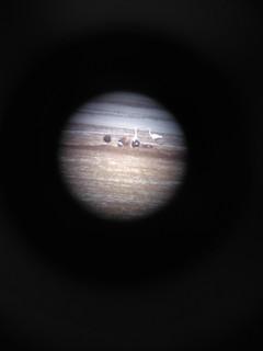 Indian Spot-billed Duck, ML174694021