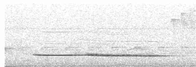Little Tinamou - LUCIANO BERNARDES