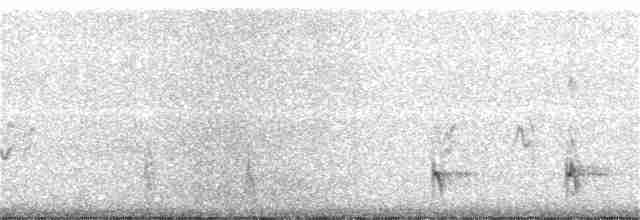 Scaled Quail - John Koon