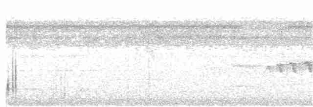 White-throated Tinamou - Ken Simonite