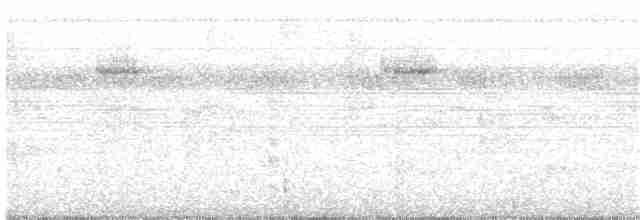 Red-legged Tinamou - Niels Poul Dreyer