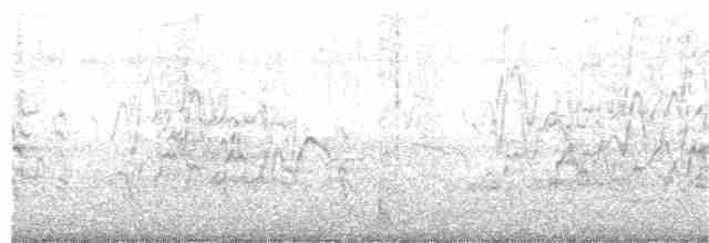 Lesser Whistling-Duck - Bijoy Venugopal
