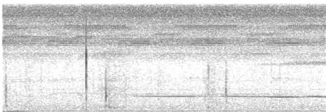 Great Tinamou - LAERTE CARDIM