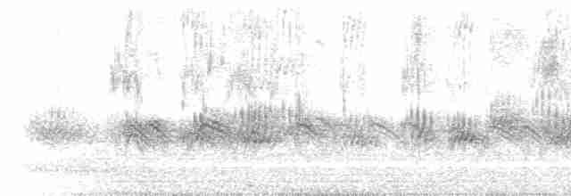 Evening Grosbeak (type 3)
