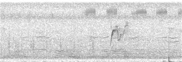 Lesser Whistling-Duck - Sutanan Pinmaneenopparat