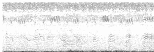Cotton Pygmy-Goose - Sabarish  D