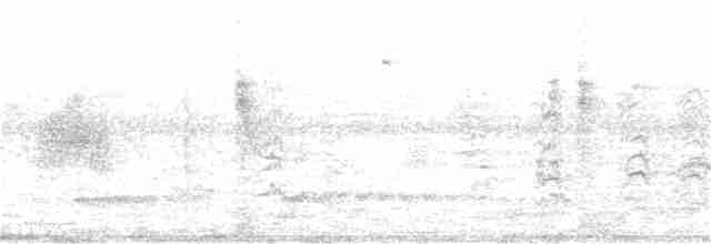 Small-billed Tinamou - Luiz Carlos Ramassotti