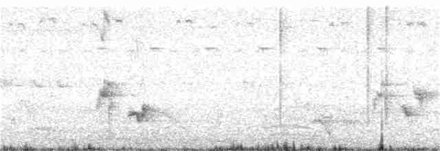 Red Spurfowl - Manoj Karingamadathil