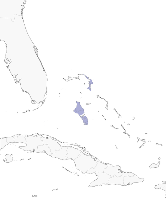 Distribution of the Bahama Oriole