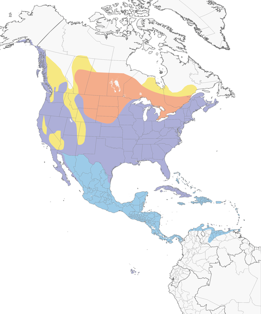 Distribution of the Great Blue Heron