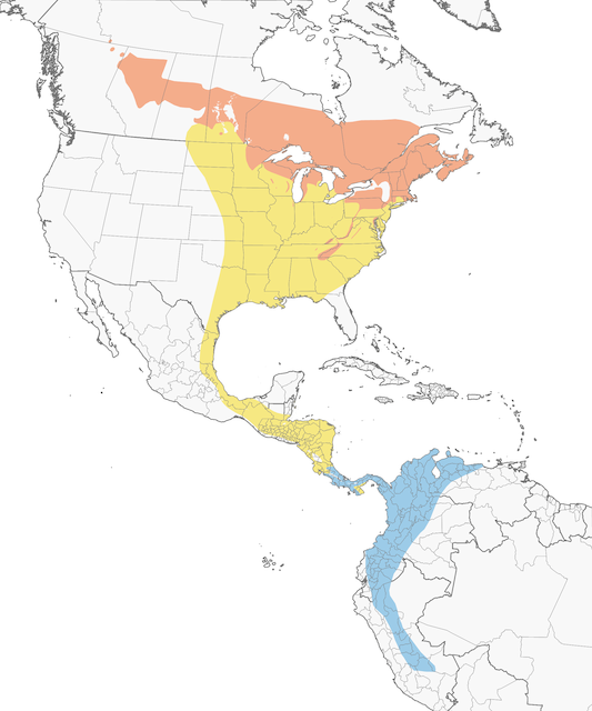 Distribution of the Canada Warbler