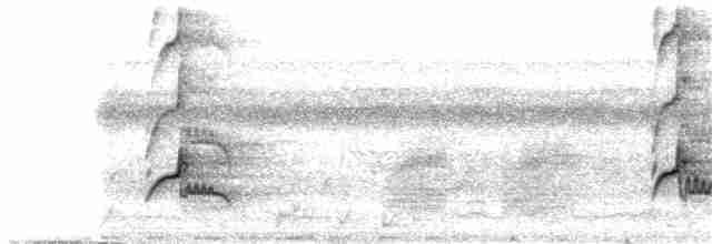 Dawn Song (variation)