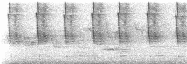 Pewy (variations)