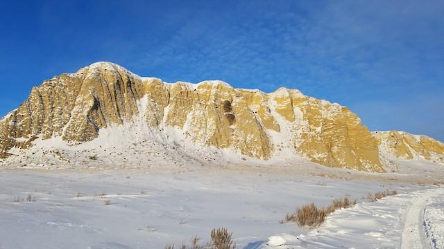 Nest site (Montana, United States).