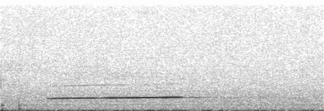 White-necklaced Partridge - James (Jim) Holmes