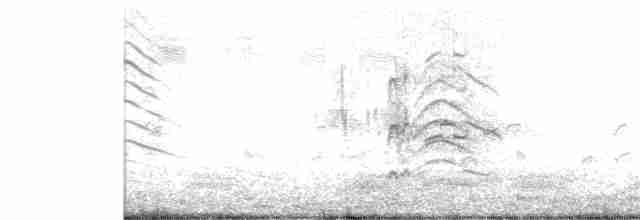 Fulvous Whistling-Duck - Sreekumar Chirukandoth