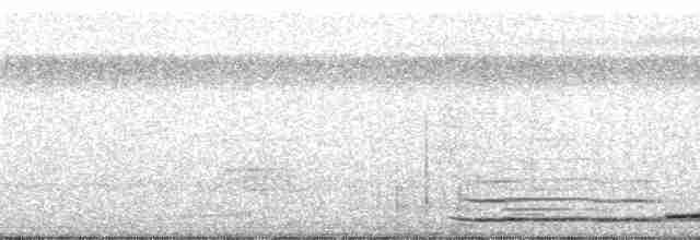 Red-legged Tinamou - Paul A. Schwartz