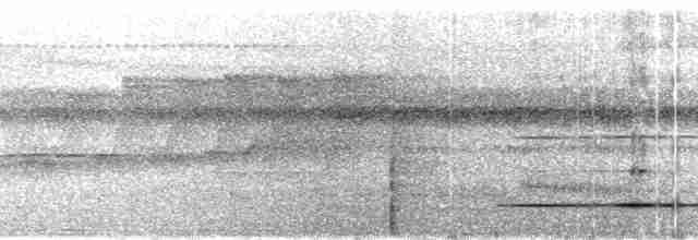 Great Tinamou - Mark Robbins