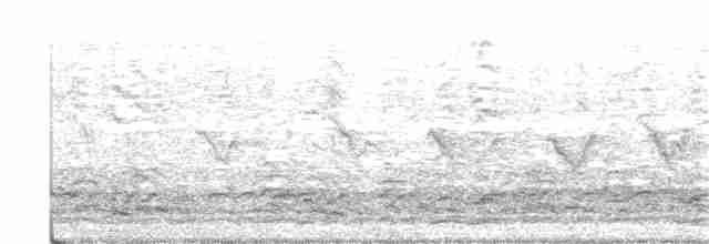 Cackling Goose - Douglas Klein